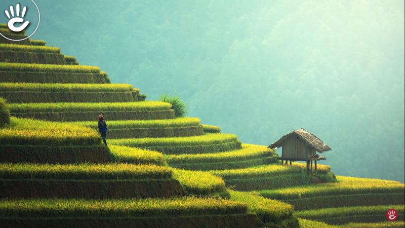 Xu Hướng Đồng Hồ Thời Trang Năm 2019 Của Giới Trẻ Nhất Định Không Thể Bỏ Qua